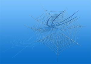 cobweb-123079_1280